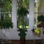 The sun porch