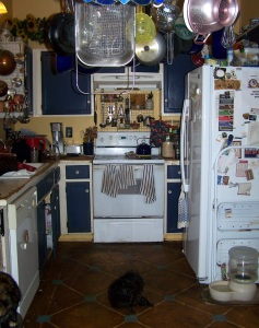 The kitchen as it stands now - a black hole of clutter