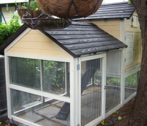 The chicken run end of the coop.